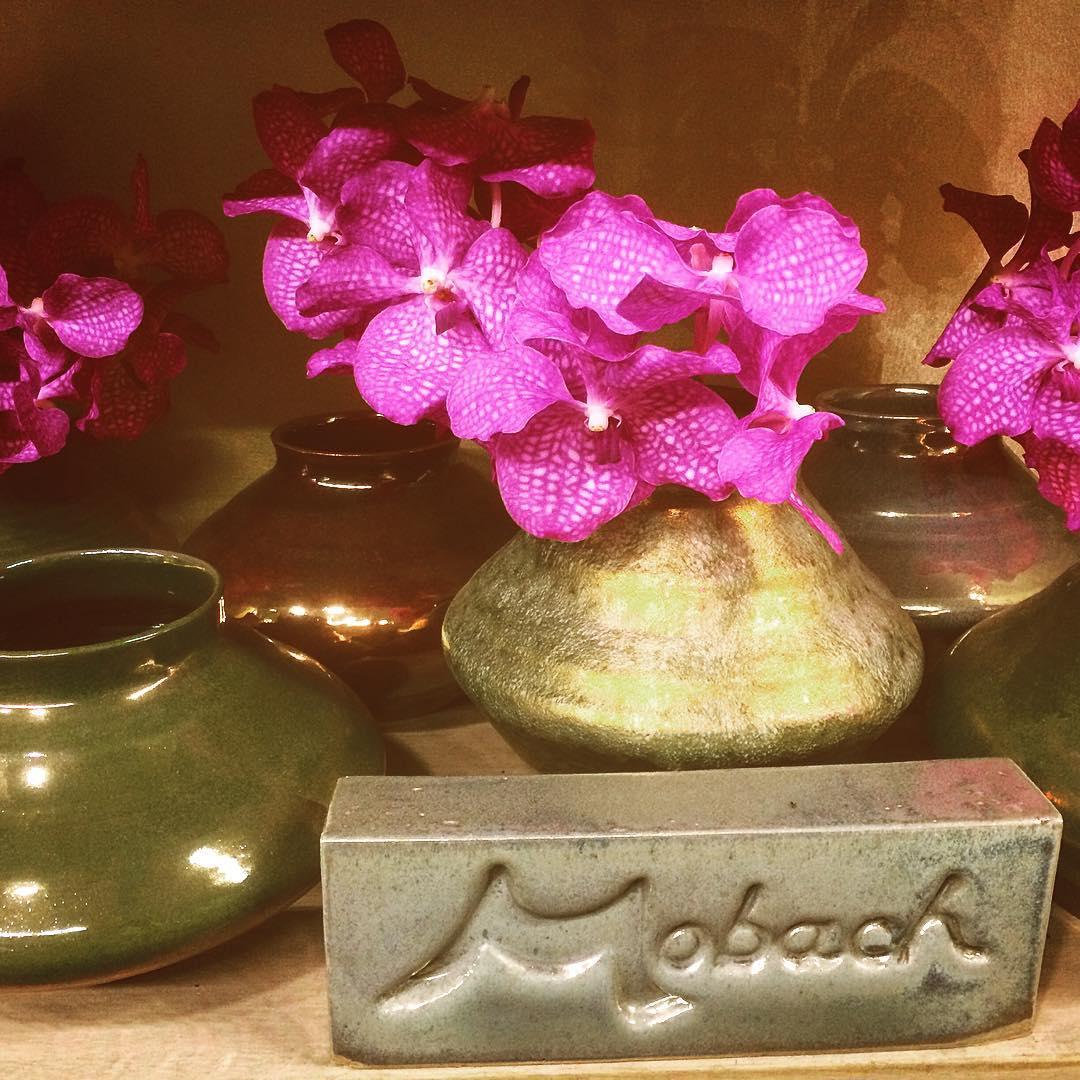 mobach vases ceramics netherlands handcrafted flowers orchids vanda fuchia pink shokingpink flowershop antwerp florartesantwerp