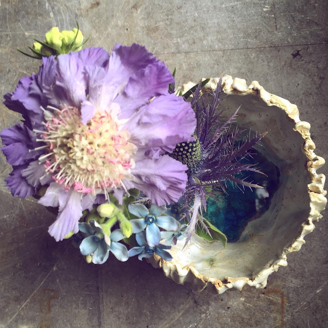ceramics studiobongard portugal algarve ferragudo scabiosa eringium oxypetalum  summer summerflowers flowers sea flowershop antwerp florartesantwerp
