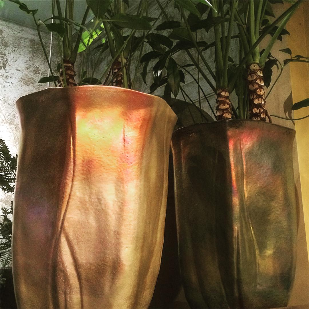 mobach ceramics utrecht philodendron funbun gold bronze plant flowershop antwerp florartesantwerp