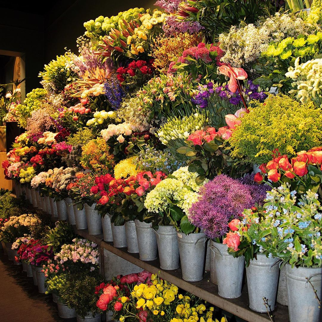Catch of the day : Mother's Day. A wall of flowers is waiting for you